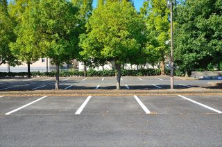 駐車場の緑化